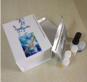 小鼠泛素蛋白(Ub)ELISA试剂盒