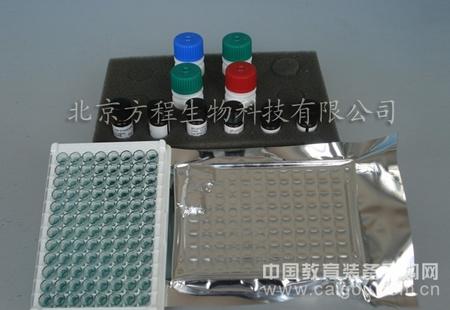 大鼠血管紧张素Ⅱ转化酶(ACEⅡ)ELISA试剂盒代测/ELISA Kit检测