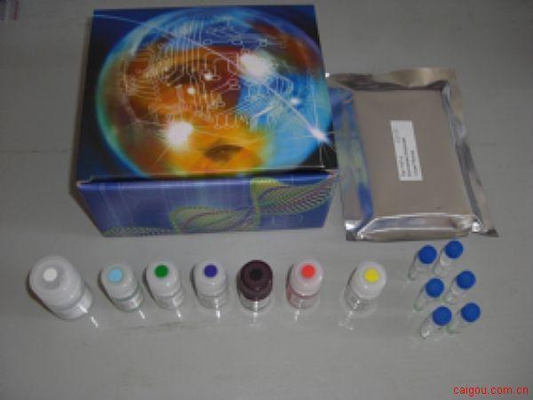 人MIF检测Elisa试剂盒