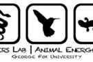 美国dpowerslab鸟类能量代谢研究案例
