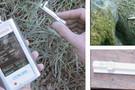使用CCM-300测量样品中叶绿素含量