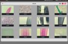 徕卡最新版AirLab应用 一张图显示所有图像