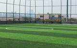 12年人工足球场建造经验_足球场人造草坪厂家_地拓体育
