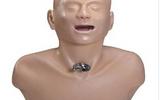 高級成人氣管切開護理模型