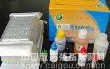 大鼠脂联素检测复孔(ADP)ELISA试剂盒最便宜价