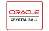Crystal Ball | 風險分析軟件