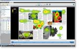 Tobii Studio 分析软件