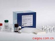 鸡NAG,N-乙酰-β-D-氨基葡萄糖苷酶Elisa试剂盒
