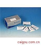 大鼠sLR,可溶性瘦素受体Elisa试剂盒