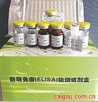 人过氧化物酶体增殖物激活受体α(PPAR-α)ELISA Kit