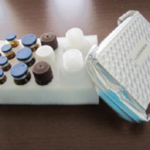 小鼠胱天蛋白酶9(Casp-9)ELISA试剂盒