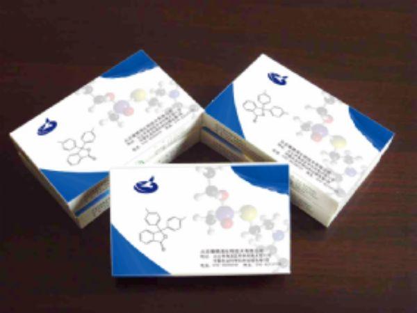 人鳞状上皮细胞癌抗原2(SCCAg-2)ELISA试剂盒