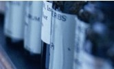 Biotin Hydrazide,CAS #: 66640-86-6