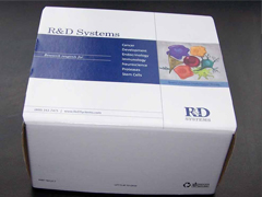人血栓素(TXB2)ELISA试剂盒