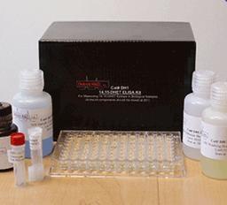 大鼠葡萄糖依赖性胰岛素释放多肽(GIP)ELISA Kit