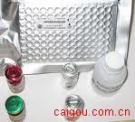 TNF相关凋亡诱导配体(TRAIL/APO2 Ligand)ELISA kit