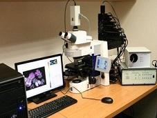 植物多参数荧光与叶绿素荧光技术及应用