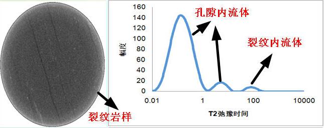 岩屑水分分布规律核磁共振成像仪