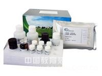 斑马鱼踝蛋白(TLN)ELISA试剂盒