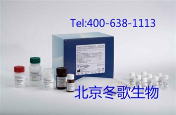 Human真胰岛素,人(TI)elisa试剂盒