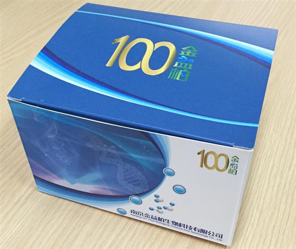 大鼠Phospho-CREBCell-BasedELISA试剂盒